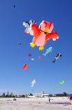 Het Festival van de Vlieger van de seinpaal Royalty-vrije Stock Foto's