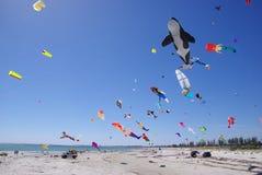 Het Festival van de Vlieger van de seinpaal Stock Foto