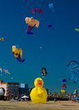 Het Festival van de Vlieger van het strand stock foto's