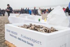 Het Festival van het de Winterbad in Søndervig in Denemarken stock afbeeldingen