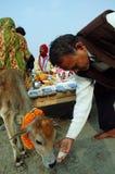 Het Festival van Gangasagar in India. Stock Fotografie