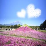 Het Festival van Japan Shibazakura met het gebied van roze mos van Sakura Royalty-vrije Stock Foto