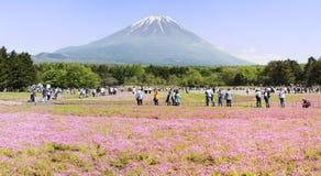 Het Festival van Japan Shibazakura met het gebied van roze mos van Sakura Royalty-vrije Stock Fotografie