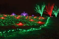 Het Festival van Kerstmis van Lichten royalty-vrije stock fotografie
