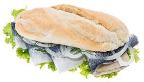Het Filethaakwerk van haringen op een baguette (tegen wit) stock fotografie