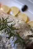 Het filethaakwerk van overzeese baarzenvissen met rozemarijn Stock Foto's