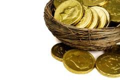 Het financiële Ei van het Nest Royalty-vrije Stock Foto