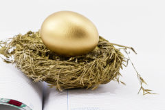 Het financiële Ei van het Nest op Open Grootboek Royalty-vrije Stock Fotografie