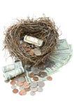 Het financiële Overlopen van het Ei van het Nest Royalty-vrije Stock Afbeelding
