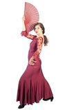 Het flamenco stelt Stock Foto