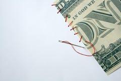 Het Flard van het geld Stock Afbeelding