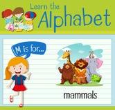 Het Flashcardalfabet M is voor zoogdieren vector illustratie