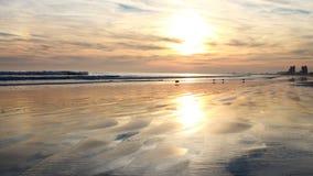 Het flikkeren zonsondergang Stock Afbeeldingen
