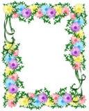 Het Floral Background malplaatje van Daisy Stock Foto