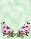 Het Floral Invitation malplaatje van Daisy Royalty-vrije Stock Fotografie