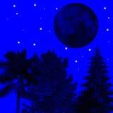 Het fonkelen nacht Stock Fotografie