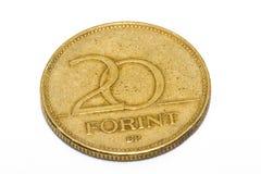 Het forintteken: Voet; code: HUF is de munt van Hongarije Muntstukken op geïsoleerde witte achtergrond royalty-vrije stock afbeeldingen