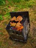 Het fornuis van de wandelingstoerist met brandstof van houten spaanders royalty-vrije stock foto's