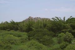 Het Fort van Golconda Royalty-vrije Stock Foto's