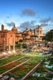 Het forum Romanum in Rome, Italië royalty-vrije stock foto's