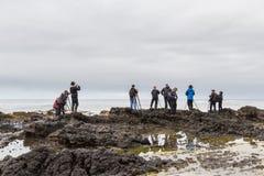 Het fotograferen van de kust van Oregon Royalty-vrije Stock Afbeeldingen