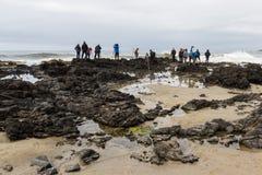 Het fotograferen van de kust van Oregon Stock Fotografie