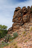 Het Fragment van de Rots van Corroboree (Gezicht) Stock Afbeelding