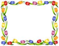 Het Frame of de Grens van de Bloem van de Tulpen van de lente Stock Afbeeldingen