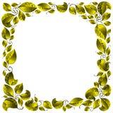 Het frame van bladeren. Stock Foto's