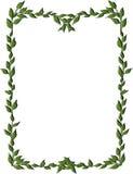 Het frame van bladeren Stock Afbeelding