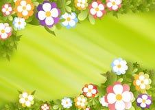 Het frame van de bloem Royalty-vrije Stock Afbeeldingen