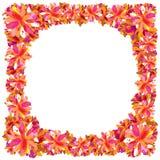 Het frame van de bloem Stock Foto's