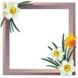 Het frame van de bloem. Royalty-vrije Stock Afbeelding