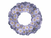 Het frame van de bloem stock afbeeldingen