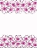 Het frame van de bloem Doorboor bloemengrens Boeket van roze azaleaachtergrond Royalty-vrije Stock Foto