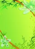 Het frame van de bloem en van het bamboe Stock Afbeeldingen