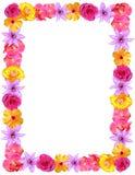 Het Frame van de bloem voor de Dag van Valentijnskaarten & van het Mamma Stock Afbeelding