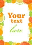 Het frame van de citrusvrucht Stock Afbeelding