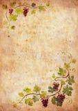 Het frame van de druif royalty-vrije stock afbeeldingen