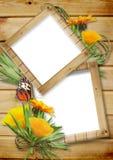 Het frame van de foto op een houten achtergrond met butterflie Stock Afbeelding
