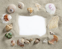 Het frame van de grens shell van het de zomerstrand lege exemplaarruimte Stock Afbeeldingen