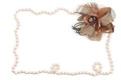 Het frame van de halsband Stock Fotografie