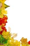 Het frame van de herfst Royalty-vrije Stock Fotografie