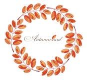 Het frame van de herfst Mooie echte bladeren die op wit worden geïsoleerdg Royalty-vrije Stock Afbeeldingen