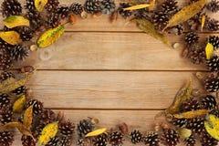 Het frame van de herfst Mooie echte bladeren die op wit worden geïsoleerdg Stock Afbeeldingen