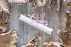 Het frame van de herfst Mooie echte bladeren die op wit worden geïsoleerdg Royalty-vrije Stock Fotografie