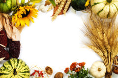Het frame van de herfst Mooie echte bladeren die op wit worden geïsoleerdg Stock Foto's