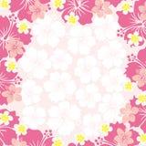 Het frame van de hibiscus Stock Foto's