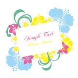 Het frame van de hibiscus Stock Afbeelding