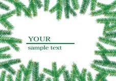 Het frame van de kerstboom branchs. vector illustratie